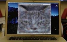 16000台电脑一起找猫