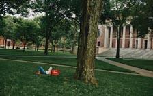 离开校园,哈佛的价值在哪里