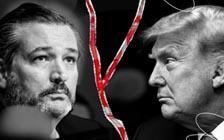 特朗普和他的共和党盟友会受到惩罚吗?(VIP)