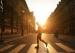步行者比驾车者更聪明?