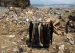 3·11大地震十周年:一个被抹去的村庄