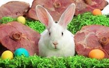 兔子,彩蛋和大火腿