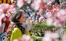 丧失嗅觉可能是感染病毒的特有症状