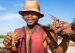 美食与生态:非洲龙虾捕捞的两难困境