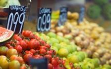 如果全世界都突然改吃素会怎样?