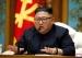 新冠疫情如何影响朝鲜(VIP)