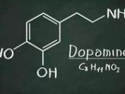 多巴胺:购物快感之源