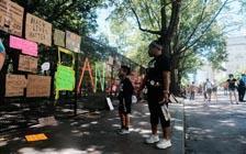 当白宫栅栏成为抗议中的地标(VIP)